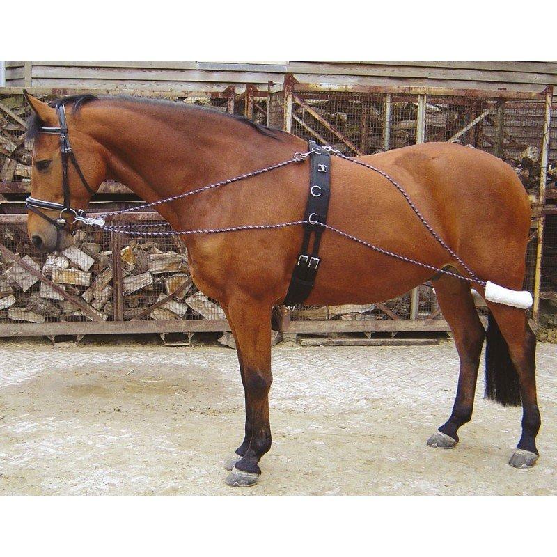 Černý lonžovací postroj Harry's Horse