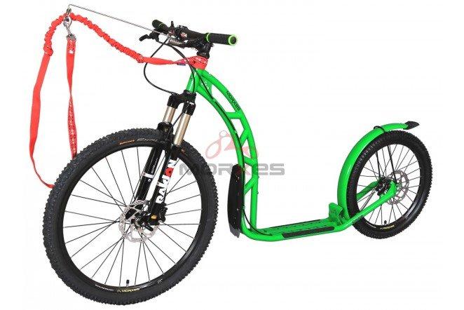 Koloběžka - Koloběžka Morxes Cane R zelená